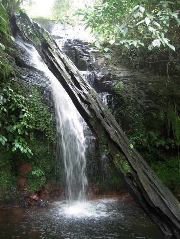 Cascada Chilacayote