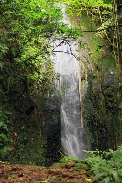 Cascada 1 Pesmas b