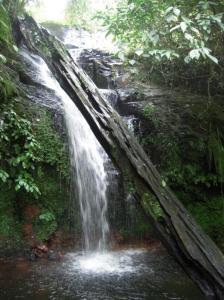 Cascada Chilacayote