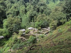 Vista del Truchal